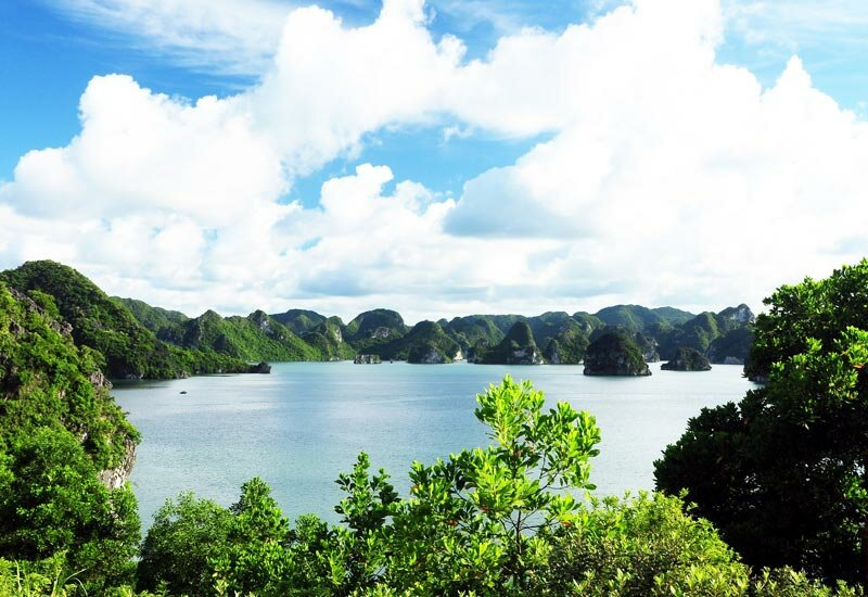 Celebrate 20 years Halong Bay was recognized as World Natural Heritage