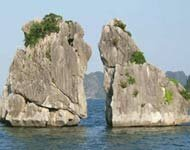 Global community focuses on Ha Long Bay